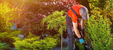 5 Smart tips on landscaping your new home
